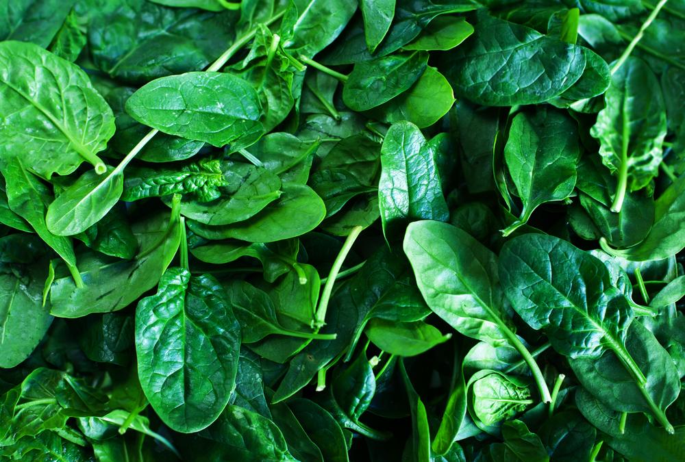 Zeleni listovi spanaća